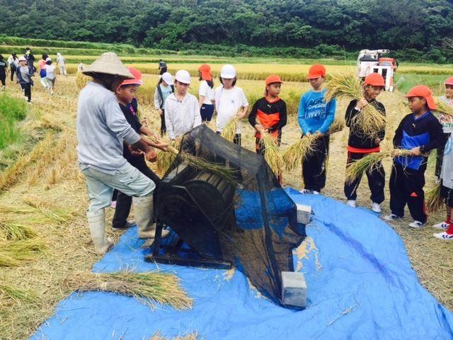 07稲刈り体験3_R