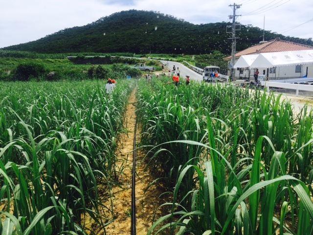 08農業体験2_R